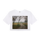 Foggy Trees Women's Crop Top