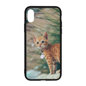 Cat Molly - iPhone X Case