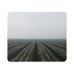 End of the field Mouse Pad