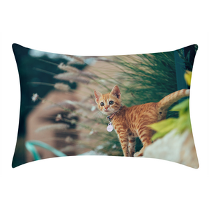 Cat Molly Queen Pillow Case