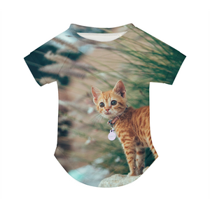 Cat Molly - Doggie Tee