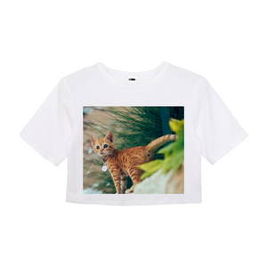 Cat Molly - Women's Crop Top