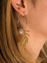 Load image into Gallery viewer, Dosinia Earrings - Gold