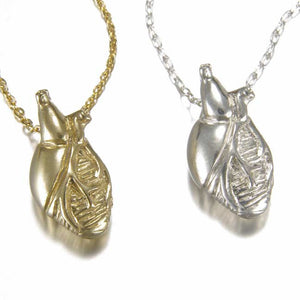 Mini Anatomical Heart Necklace