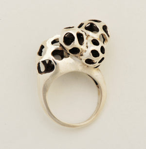 Lattice Cluster Ring