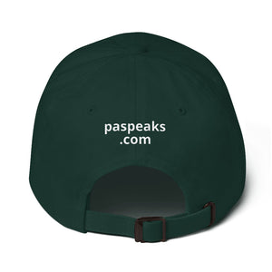 #erased Baseball Hat Black, Navy & Green - Parental Alienation Speaks Store