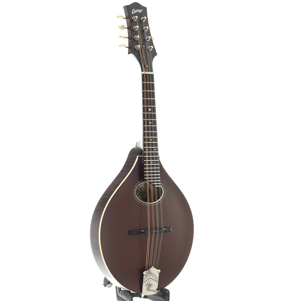 Collings MT O Oval-Hole Sheraton Brown Mandolin & Case, Ivoroid Binding, Satin Finish