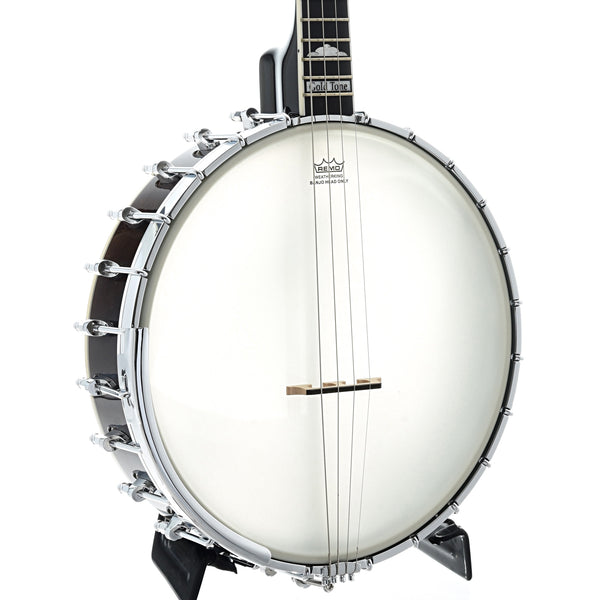 Gold Tone It-250 Openback Irish Tenor Banjo