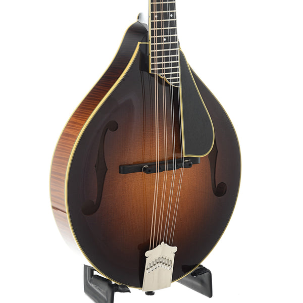Collings MT2 Deluxe A-Model Mandolin & Case, Varnish Finish
