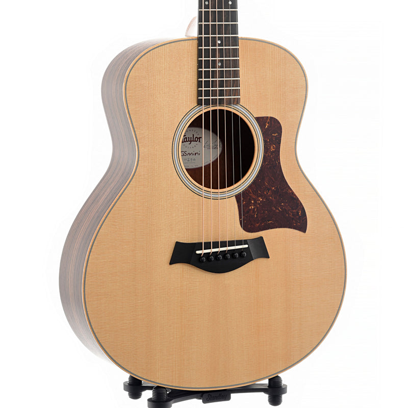 Taylor GS Mini Rosewood & Bag