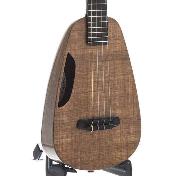 Blackbird BCU-PTV Clara Ekoa Concert Ukulele with Pickup and Gigbag