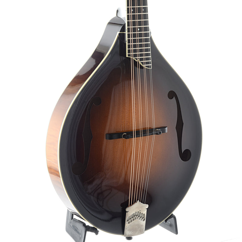Collings MT2 Mandola (2010)