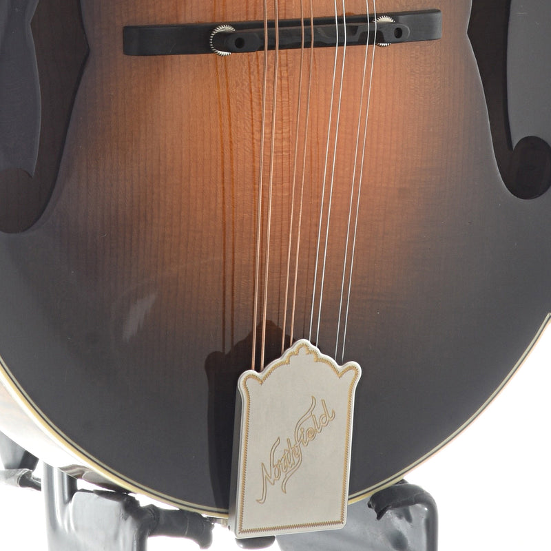 Northfield Workshop Shopworn Artist Series F5 Mandolin, Variation 2, Italian Spruce Top