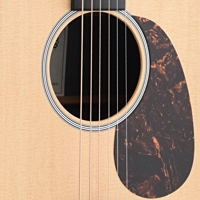 Martin Custom X Series DX1AE (2013)