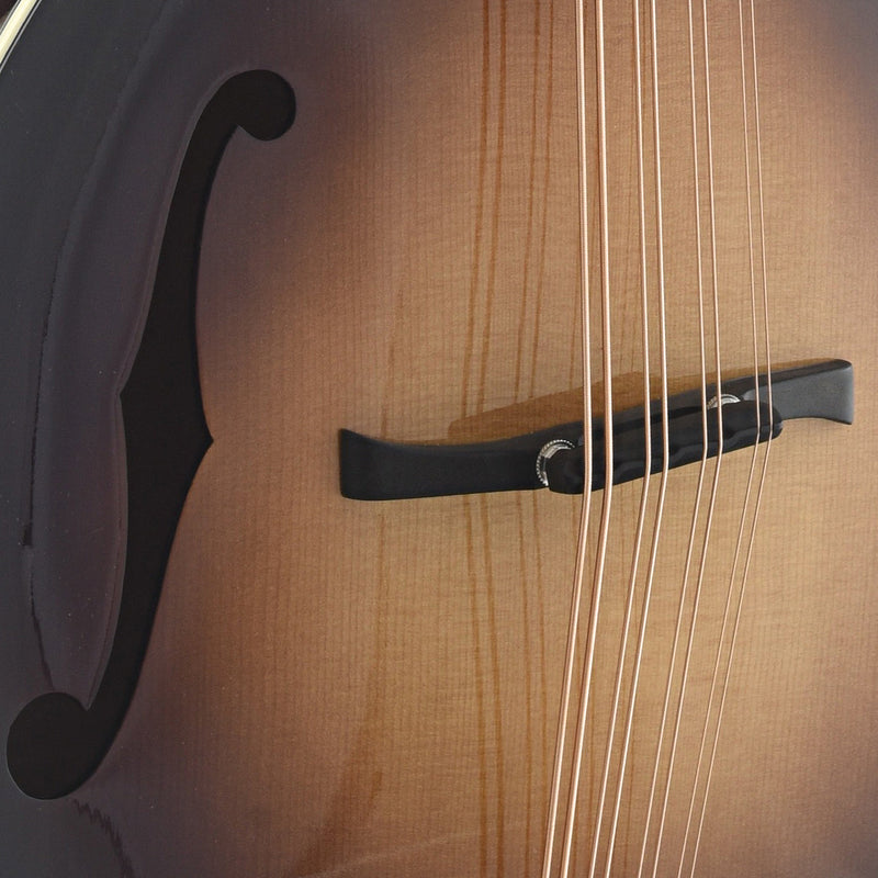 Weber Yellowstone F24-F Mandocello with F-Holes