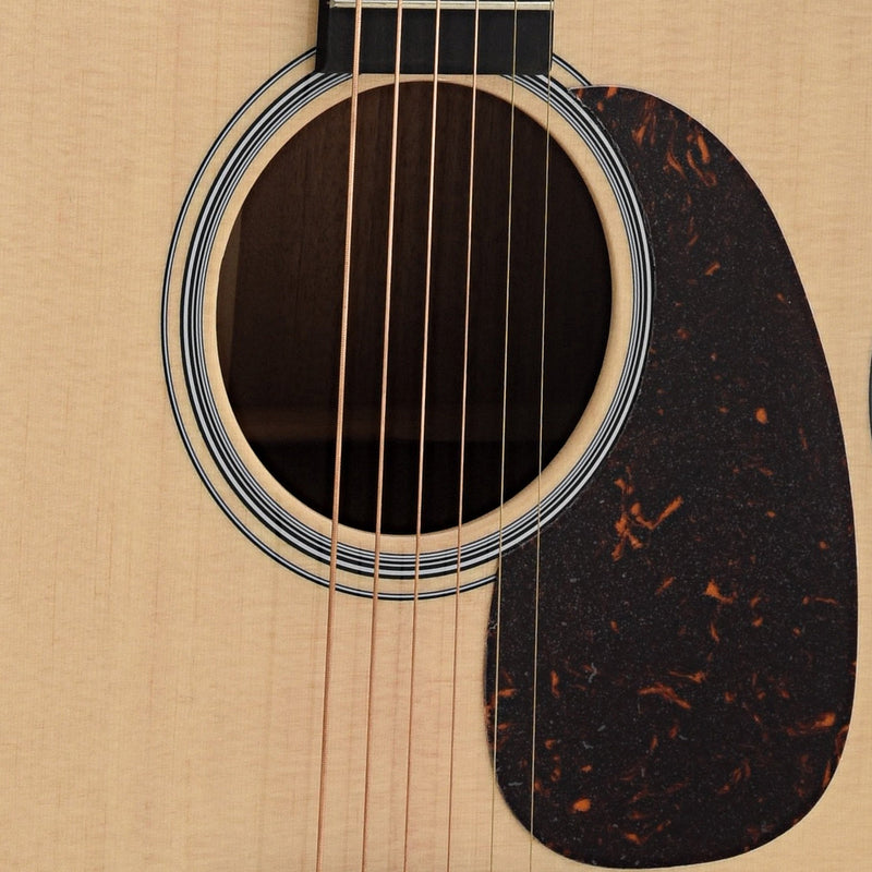 Martin GPCPA4 Performing Artist Guitar & Case, with Fishman F1 Analog Pickup System