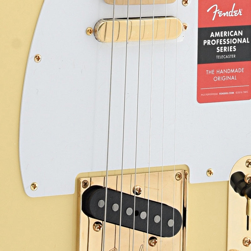 Fender Limited Edition American Professional Telecaster (2018)