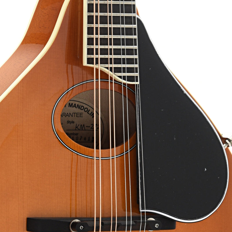 Kentucky KM-272 Mandolin, A-Model, Oval Hole, Transparent Amber & Gigbag