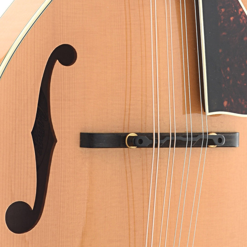 Collings MT2 (2004)