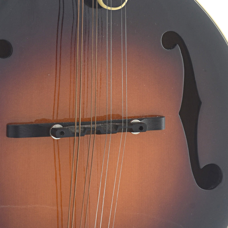 The Loar LM-400 VS (2010)