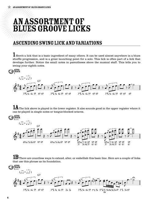 100 Authentic Blues Harmonica Licks – Elderly Instruments