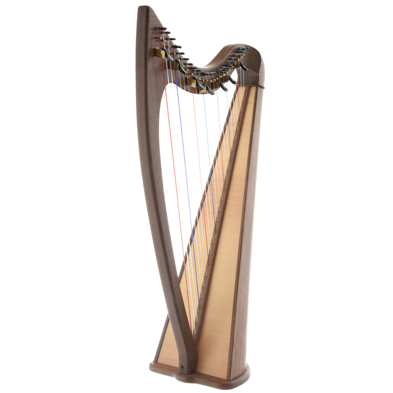 Noteworthy County Kerry 24 Folk Harp (2017))