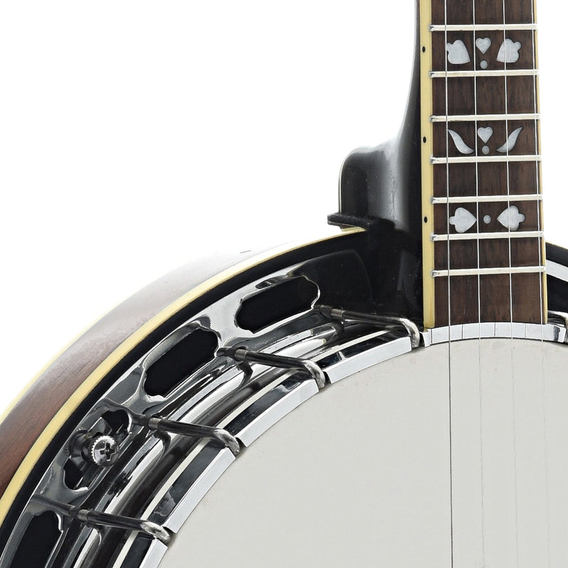 Gold Tone PS-250 Plectrum Banjo (recent)