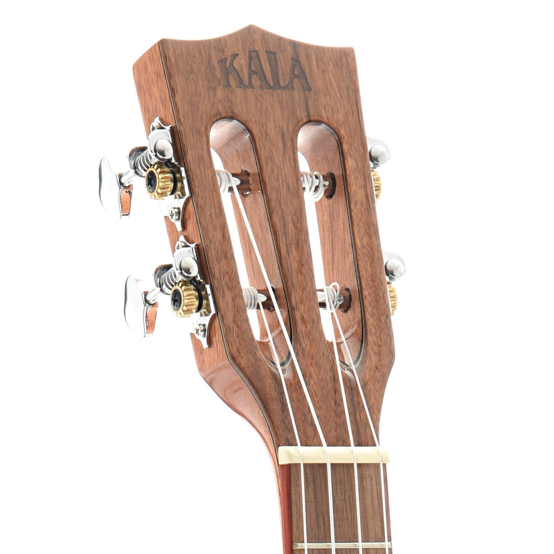 Kala KA-ATP-CTG-CE Solid Cedar Top with Acacia Back and Sides Tenor Cutaway Ukulele, with Pickup