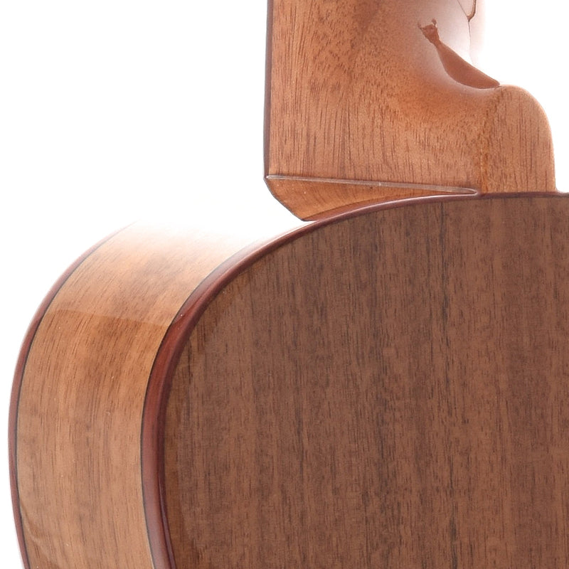 Kala KA-ACP-CTG Solid Cedar Top with Acacia Back and Sides Concert Ukulele