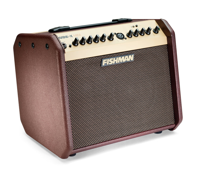 Fishman Loudbox Mini with Bluetooth Acoustic Amp with FREE Deluxe Carry Bag