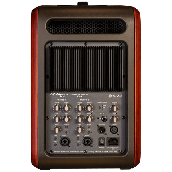 L.R. Baggs Synapse Personal PA System