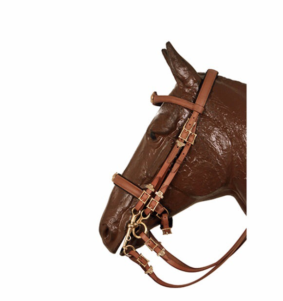 Mixed double bridle   0006
