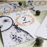 Baby Milestone Card Set - Krafty Hands Designs