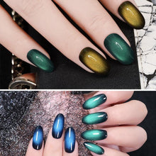 Load image into Gallery viewer, Cat Eye Gel Polish Set