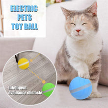 Load image into Gallery viewer, Interactive Pet Ball