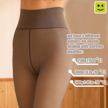 Load image into Gallery viewer, Sheer Winter Pantyhose