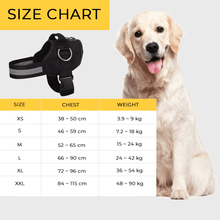 Load image into Gallery viewer, Safety Dog Body Harness