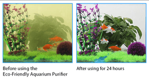 Eco-Friendly Aquarium Purifier