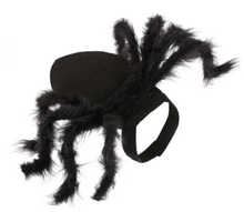 Load image into Gallery viewer, Pet Spider Costume