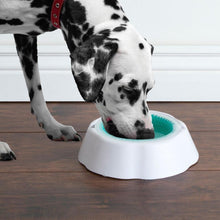 Load image into Gallery viewer, Non Slip Pet Cooling Bowl