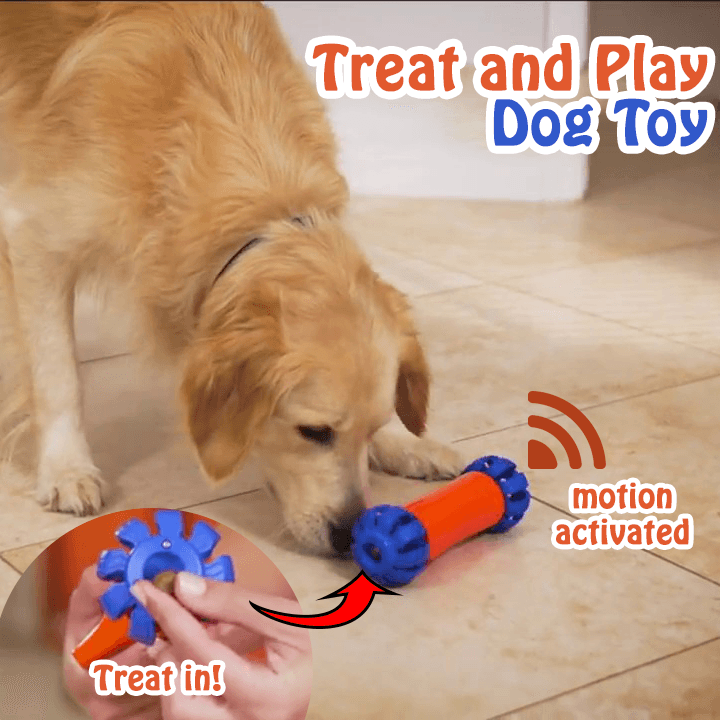 Treat and Play Dog Toy