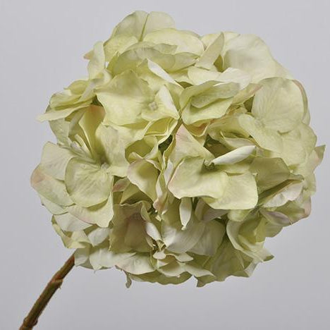 Hydrangea Stem Green & Grey