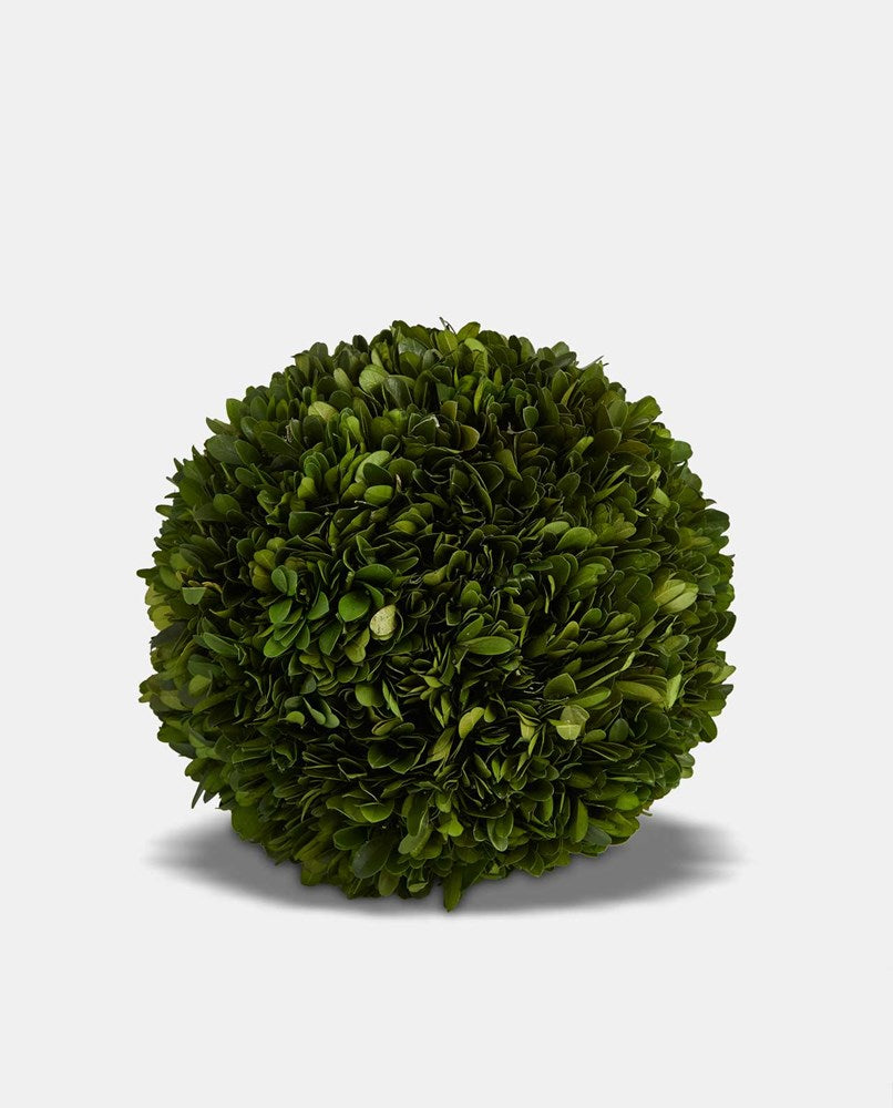 Topiary Ball Medium