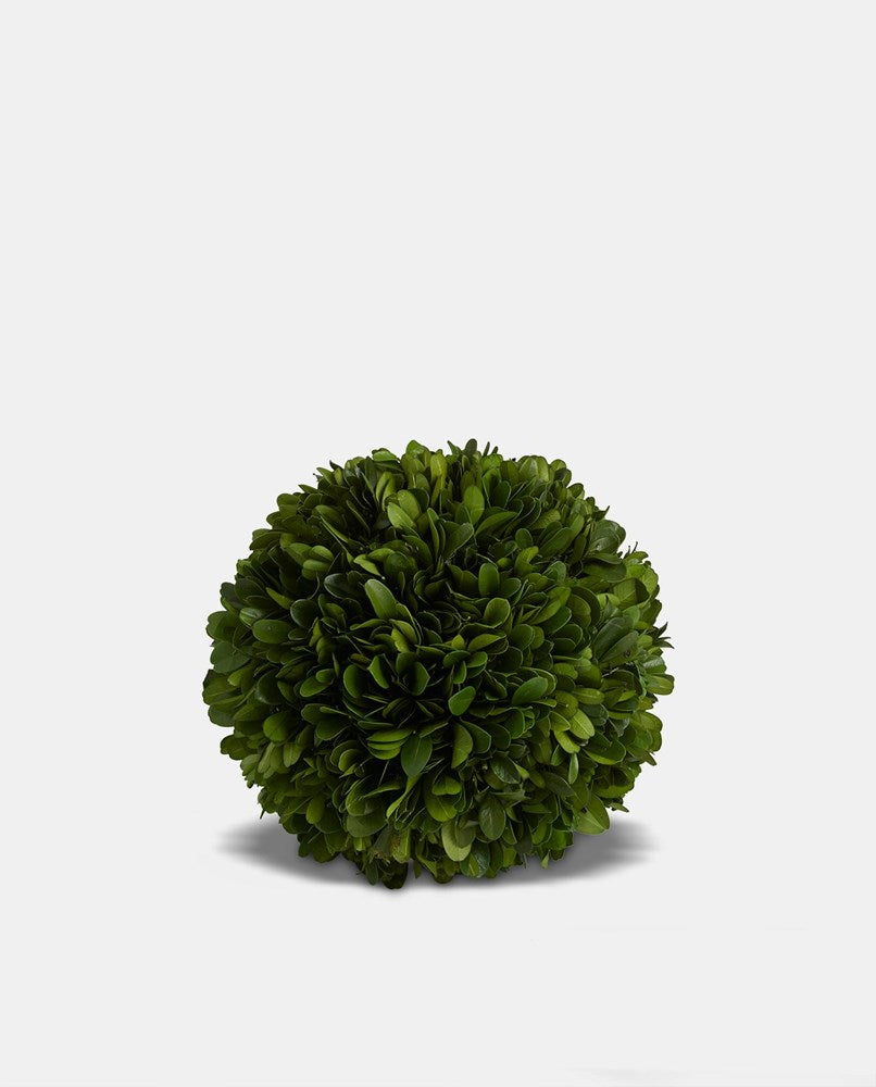 Topiary Ball Small