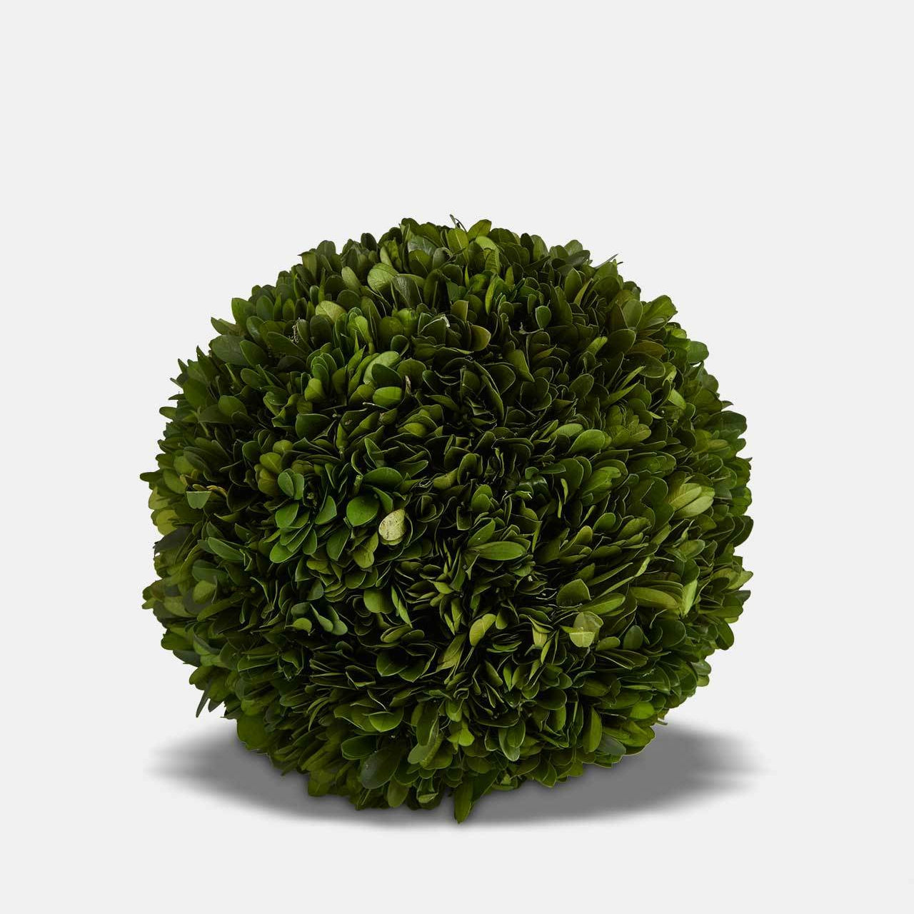 Topiary Ball 20cm
