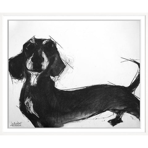 Valerie Davide Dogs 4