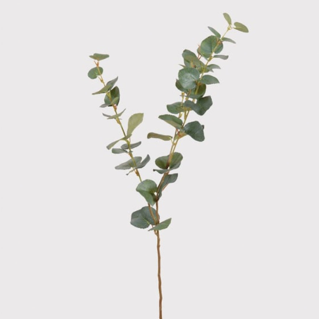Nat. Eucalyptus Spray