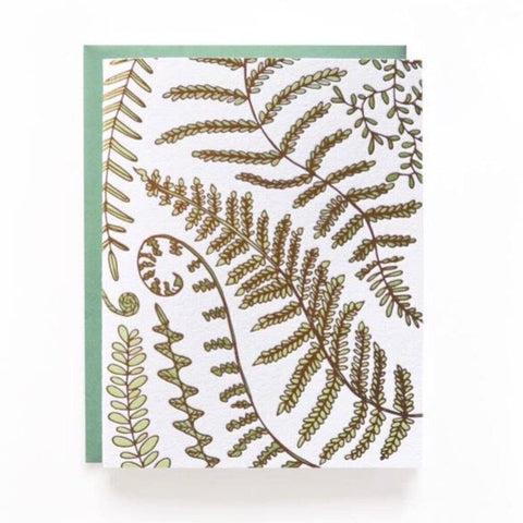 Wild Ink Fern Letterpress Boxed Note Cards