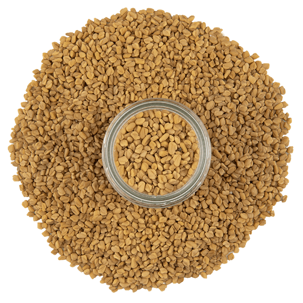 fenugreek-seeds-3.png|algolia