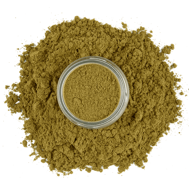 ground-mexican-oregano-3.png|algolia